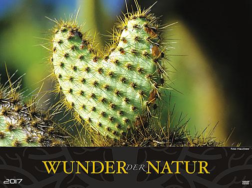 Sedlmayr-Werbekalender-Bildkalender-Wunder der Natur-2017-Fotos-Klaus-Ender